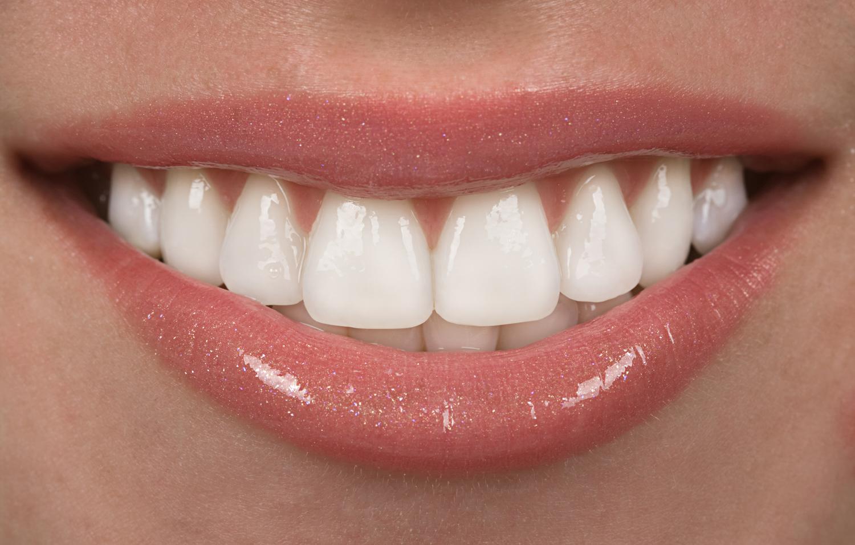 endodontics butte mt